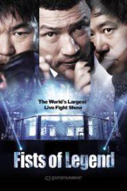 Fists of Legend (2013) นักสู้จ้าวสังเวียน