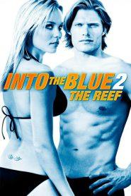Into The Blue 2 The Reef (2009) ดิ่งลึก ฉกมฤตยู