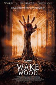 Wake Wood (2009) หลอนป่าระทึก
