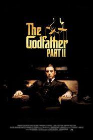 The Godfather II (1974) เดอะ ก็อดฟาเธอร์ 2