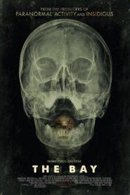 The Bay (2012) 24 ชม. แพร่พันธุ์สยอง