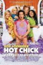 The Hot Chick (2002) ว๊าย ..สาวฮ็อตกลายเป็นนายเห่ย