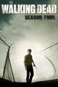 The Walking Dead Season 4 (2013) ล่าสยองทัพผีดิบ ปี 4