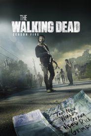The Walking Dead Season 5 (2014) ล่าสยองทัพผีดิบ ปี 5
