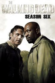 The Walking Dead Season 6 (2015) ล่าสยองทัพผีดิบ ปี 6