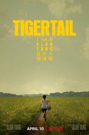 Tigertail (2020) รอยรักแห่งวันวาน