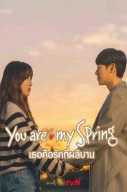 You Are My Spring (2021) เธอคือรักที่ผลิบาน