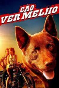 Red Dog (2011) เพื่อนซี้ หัวใจหยุดโลก