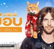 A Street Cat Named Bob (2016) บ๊อบ แมว เพื่อน คน
